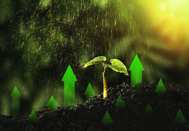 Groene bedrijfsinvesteringen ontwikkeling en groei van ecologie in de hele wereld