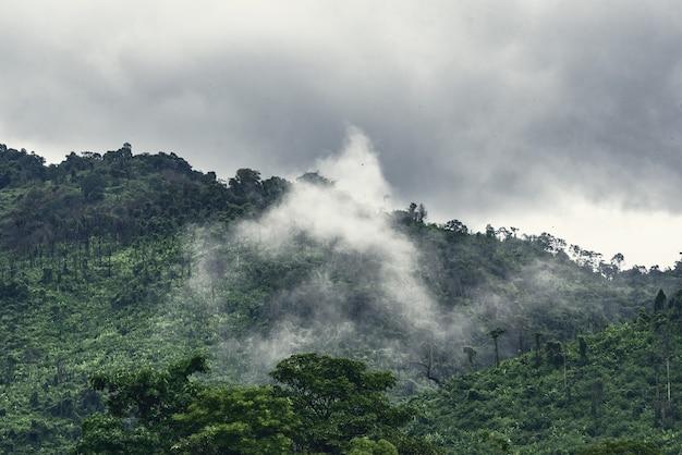 Groene berg in de wolk en mist