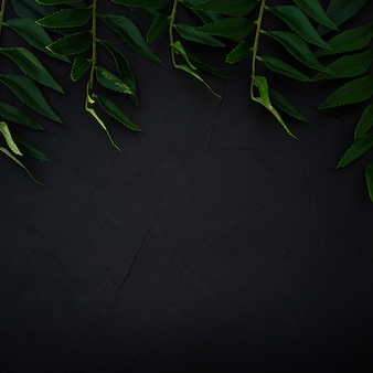 Groene bladeren achtergrond. groene bladeren kleurtint donker