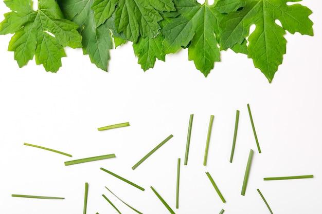 Groene bladeren frame abstracte achtergrond