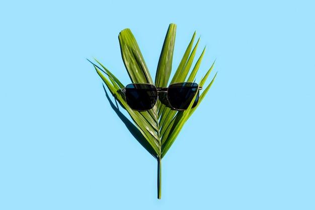 Groene bladeren met zonnebril op blauwe achtergrond. geniet van vakantieconcept.