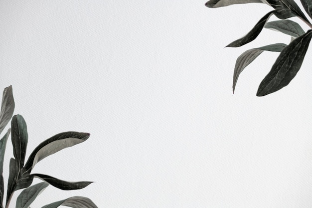 Groene bladeren natuur achtergrondafbeelding