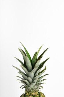 Groene bladeren van ananas, toppen, greens
