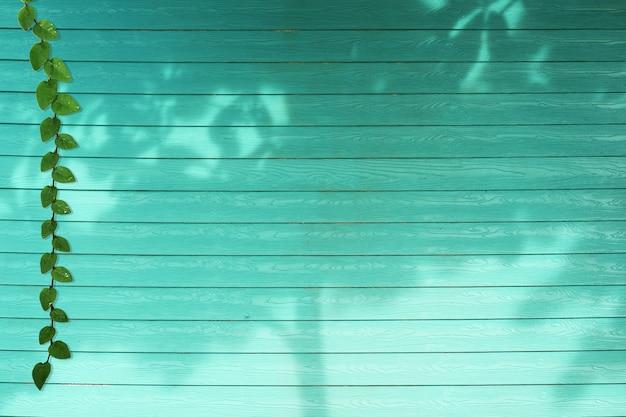 Groene bladeren van coatbuttons-aardgrens en de boom van de schaduwinstallatie op het hout van de aquakleur
