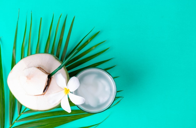 Groene bladerenpalm en verse kokosnoot