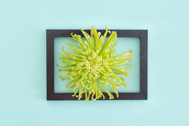 Groene bloem ingelijst op blauwe achtergrond