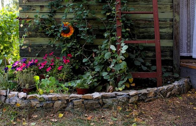 Groene bloemen in de tuin