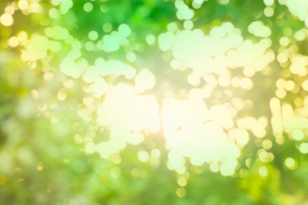 Groene bokeh achtergrond