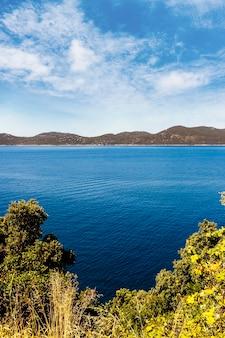 Groene bomen dichtbij het blauwe meer met berg