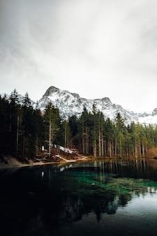 Groene bomen dichtbij watermassa en berg