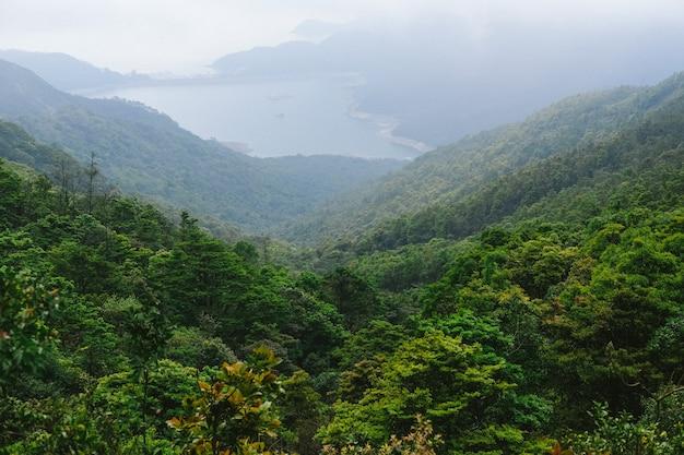 Groene bomen op de bergen met uitzicht op het meer