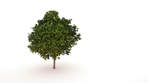 Groene boom met bladeren in de vorm van geld, plant. geïsoleerd grafisch ontwerpelement op witte achtergrond, landschap. 3d-afbeelding.