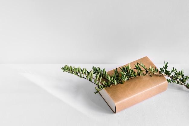 Groene boomtak over het bruine boek dat op witte achtergrond wordt geïsoleerd