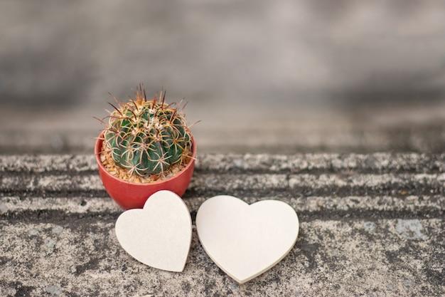 Groene cactus en houten hartenachtergrond.