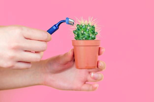 Groene cactus in een bruine pot en een scheermes op een roze achtergrond. het concept van ontharen, epileren en verwijderen van ongewenst haar op het lichaam.