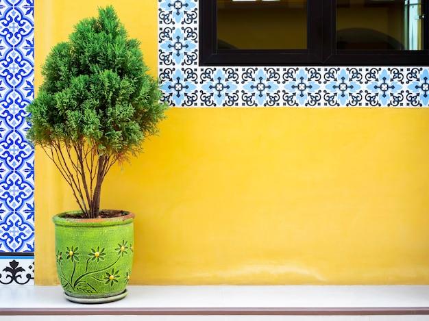 Groene dennenbladeren in plantpotdecoratie op gele muurbouwachtergrond in de buurt van het glazen raam versierd met mozaïektegels in marokkaanse stijl met kopieerruimte.