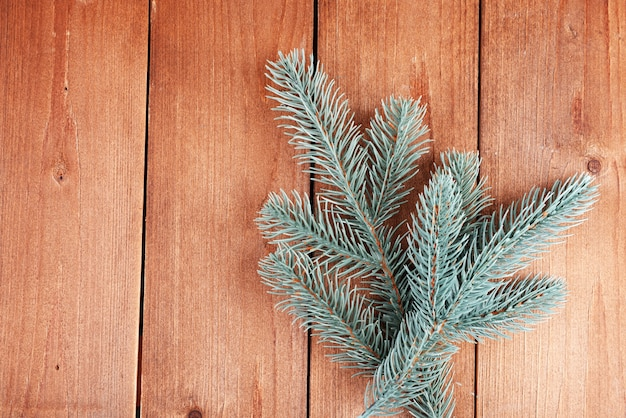 Groene dennenboom op houten achtergrond