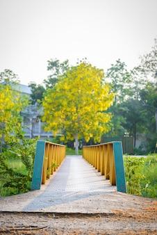 Groene en gele stalen brug en gouden doucheboom