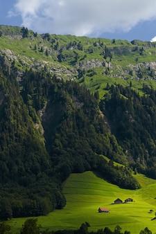 Groene en grijze bergen overdag