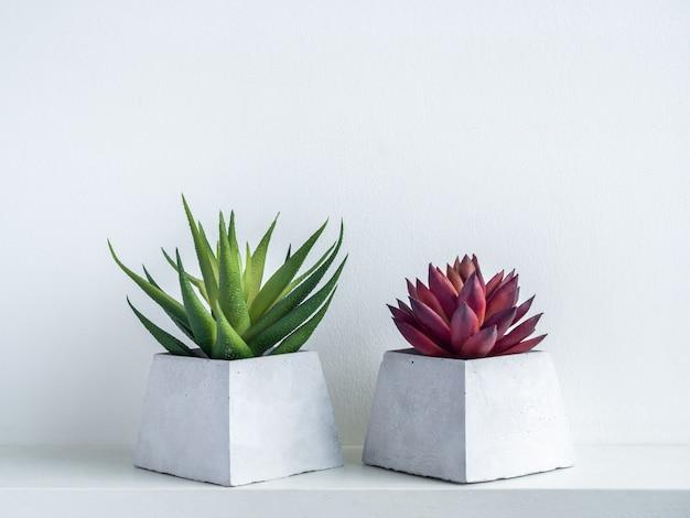 Groene en rode succulente planten in moderne geometrische cementplanters op witte houten plank op wit