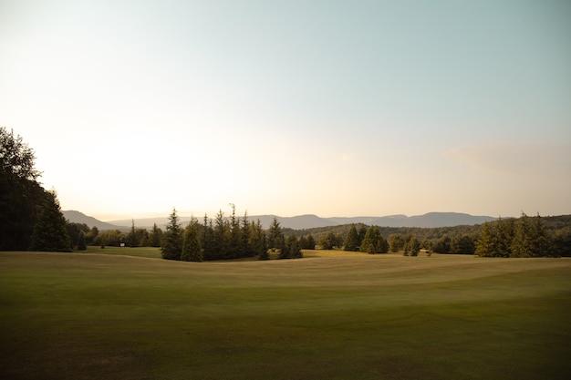 Groene golfbaan in spanje met bos