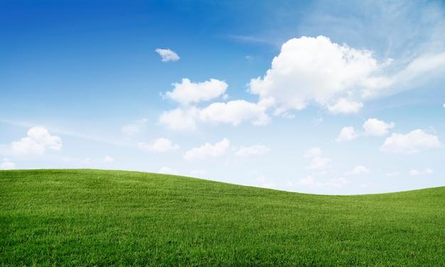 Groene grasheuvel en blauwe hemel