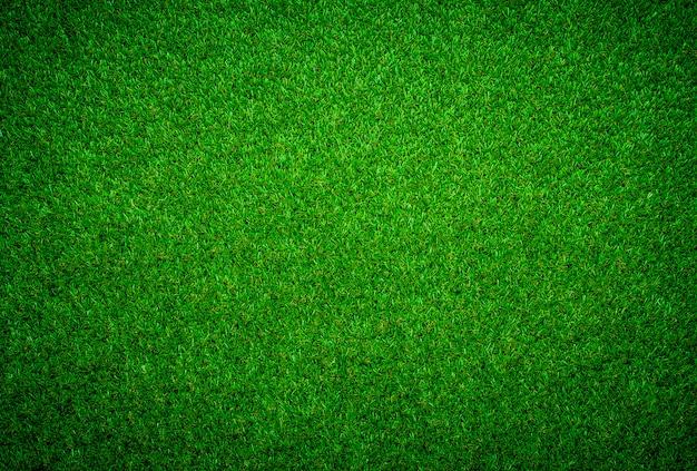 Groene grastextuur kan als achtergrond worden gebruikt