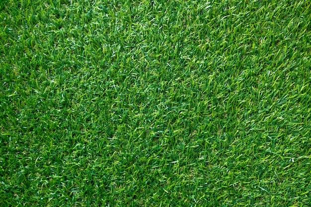 Groene grastextuur voor achtergrond. groen gazonpatroon en textuur. bovenaanzicht.