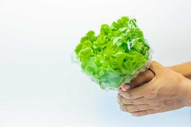 Groene groente op witte achtergrond