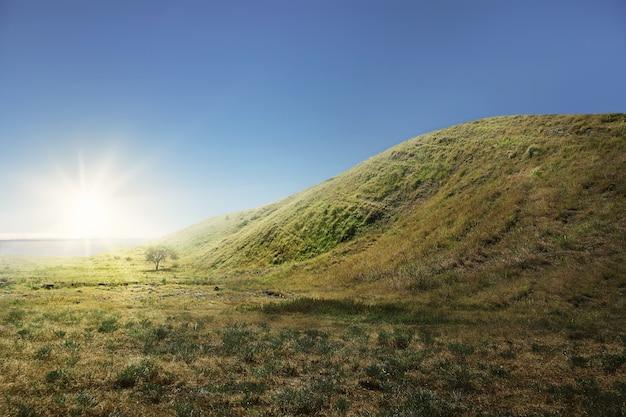 Groene heuvel met grasveld