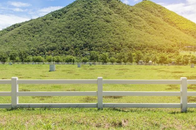 Groene heuvels en hek weelderige gras, blauwe lucht met witte wolken