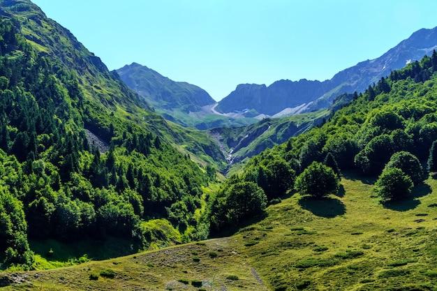 Groene hoge berglandschap met coniferen en hoge toppen in de pyreneeën, frankrijk, europa,
