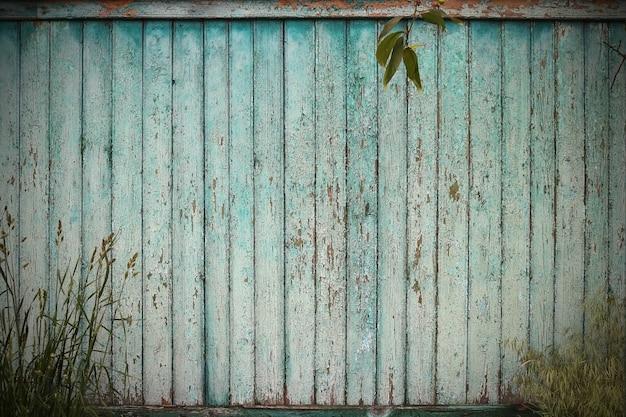 Groene houten hek, groen gras en bladeren