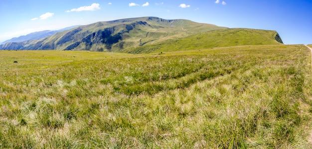Groene karpatische bergheuvels en pieken in zonnige zomerdag