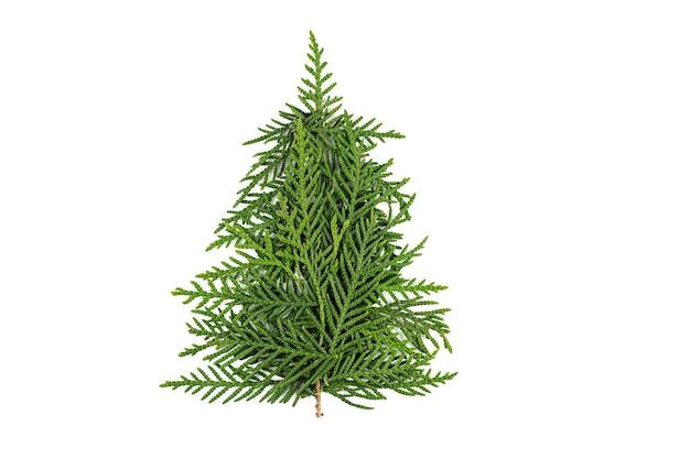 Groene kerstboom gemaakt van naaldhout takken op witte achtergrond. minimale compositie achtergrond. nieuwjaar en kerstmis concept.
