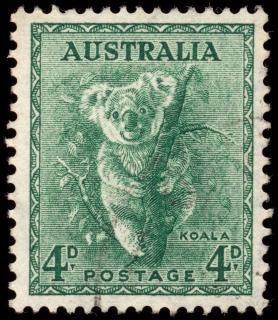 Groene koala stempel