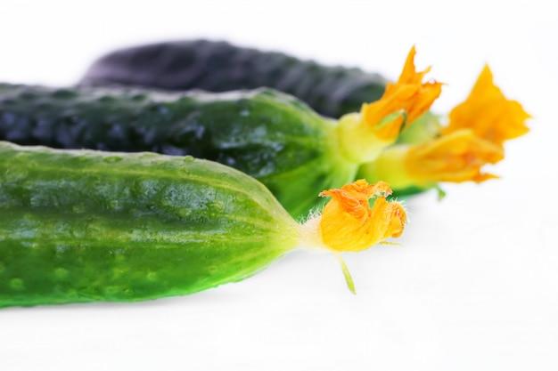 Groene komkommer voor salade op een witte achtergrond