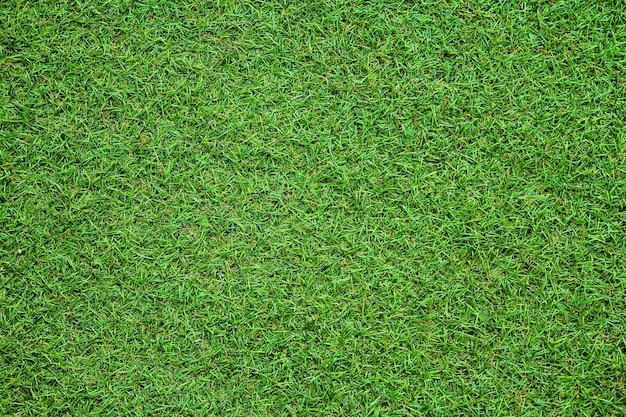 Groene kunstgras textuur