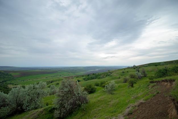 Groene mooie weiden onder een bewolkte hemel vroege zomer