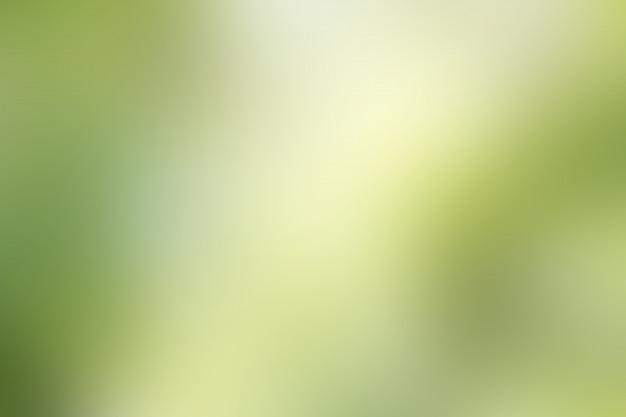 Groene onscherpe achtergrond