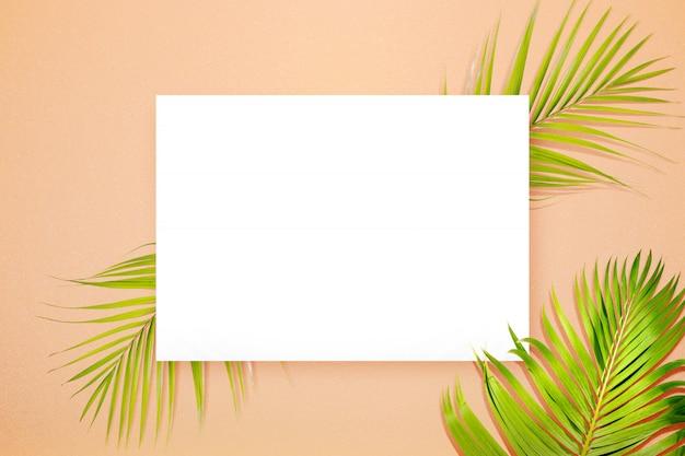 Groene palmbladen op een gekleurde achtergrond