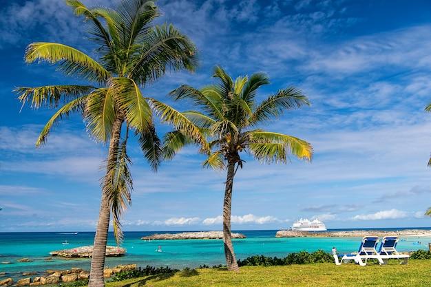 Groene palmbomen aan de kust van het zandstrand in de buurt van oceaan- of zeewater zonnige dag buiten op natuurlijke blauwe hemelachtergrond