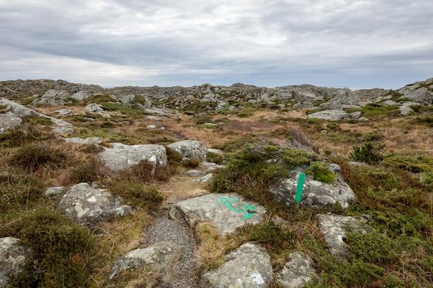 Groene pijlen die in de richting van het pad wijzen. de rovaer-archipel, rovaer-eiland in haugesund, noorwegen.