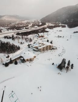 Groene pijnbomen op sneeuw bedekte grond overdag