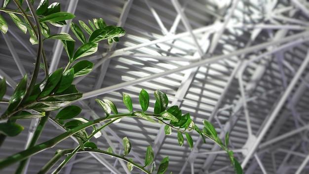 Groene plant en metalen dak - architectuur in hedendaagse zakelijke gang. lege interieur achtergrond. lente achtergrond