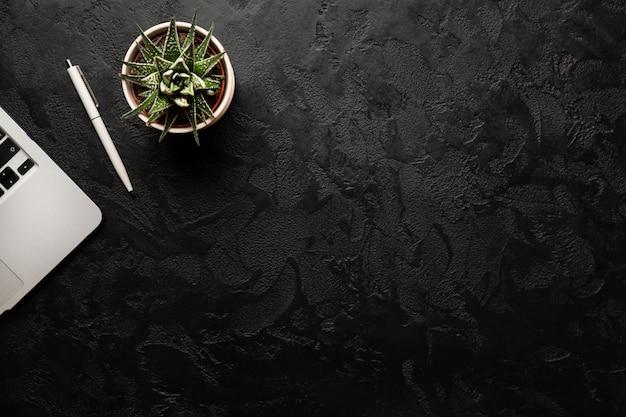 Groene plant in een pot, pen en moderne zilveren laptop op donkere achtergrond.