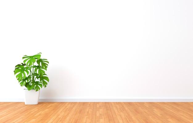 Groene plant in een witte kamer. 3d-afbeelding