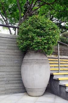 Groene plant in grote betonnen vaas op straat in de stad
