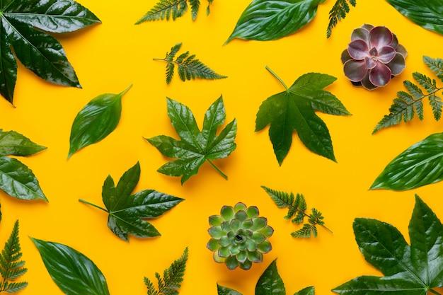 Groene plant op de gele achtergrond. retro vintage stijl.