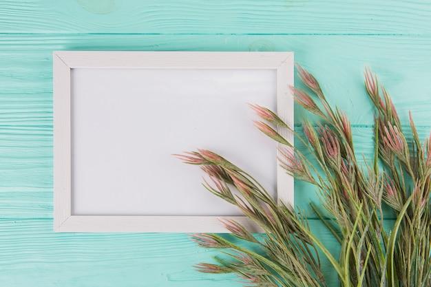 Groene plant takken met frame op blauwe tafel